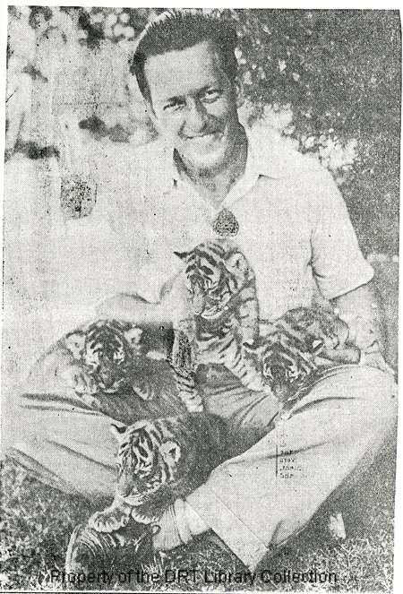 San Antonio Express, August 9, 1936. Zoo director Fred Stark with four three-week-old tiger cubs, believed to be the first quadruplet tiger litter born in captivity.